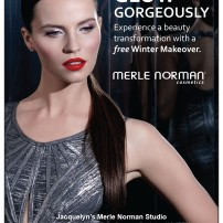 Merle Norman vol 4 2016